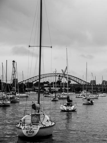 Rushcutters Bay, Sydney