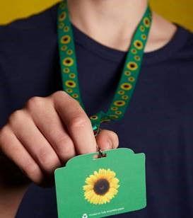 Sunflower-scheme-pic.jpg