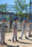 Youth Sports baseball football basketball hockey soccer flag football tackle football afterschool dodgeball lacrosse tennis theater birthday parties volleyball track wrestling