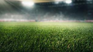 Agenda do dia: Libertadores, Liga dos Campeões e Sul-Americana agitam o futebol