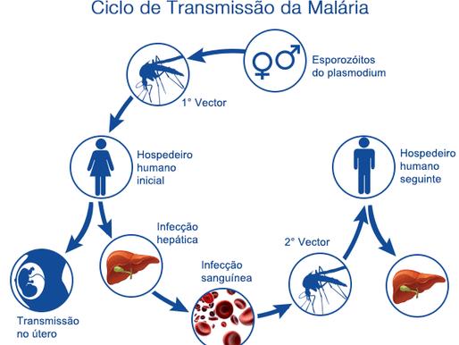 Itabela-Ba: 40 Casos de Malária acendem preocupação com surto