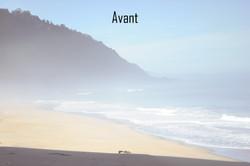 AvantC