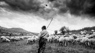 Hungary_Romania For Leica
