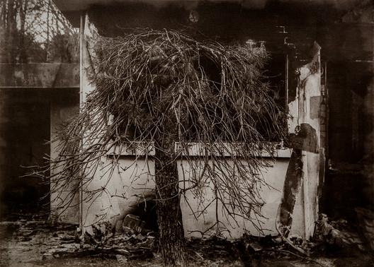 Black House#17_56x76cm_Van Dyke Brown P