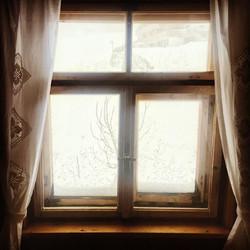___ Wenn der Schneewind weht ❄️ ___