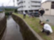 半尾橋の草刈り.JPG