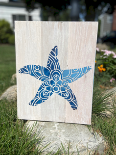 Muli-colored starfish