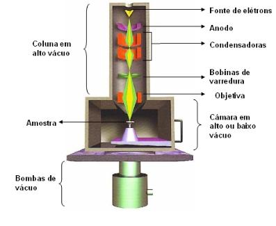 Esquema da estrutura interna do MEV