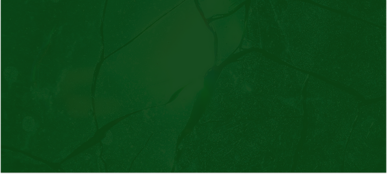 Desktop - 3 (1).png