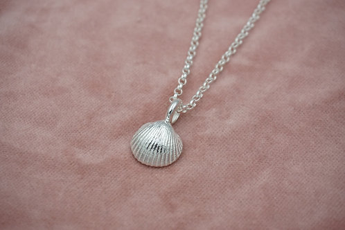 Baby Shell Necklace