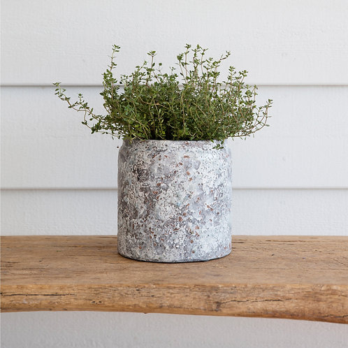 Ceramic Withington Plant Pot