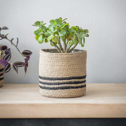 Striped Jute Planter