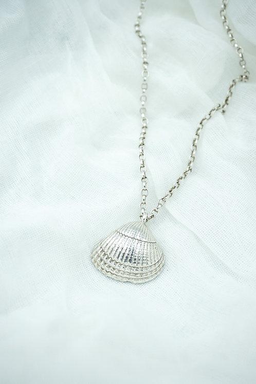 Midi Shell Necklace