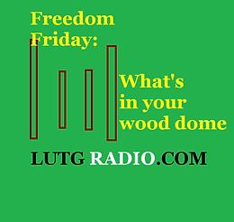 Freedom Friday 1 -LUTG RADIO Show with Kathy Brocks
