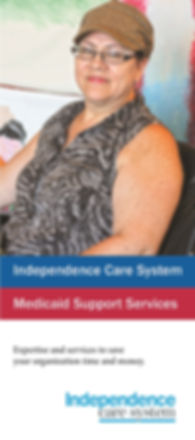 MSS Brochure image.jpg