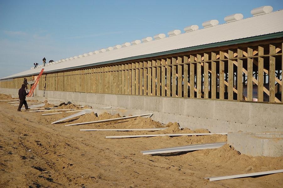 Hala zootehnica din ferme prefabricate din lemn | Miradex