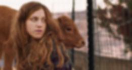 פרה אדומה.jpg