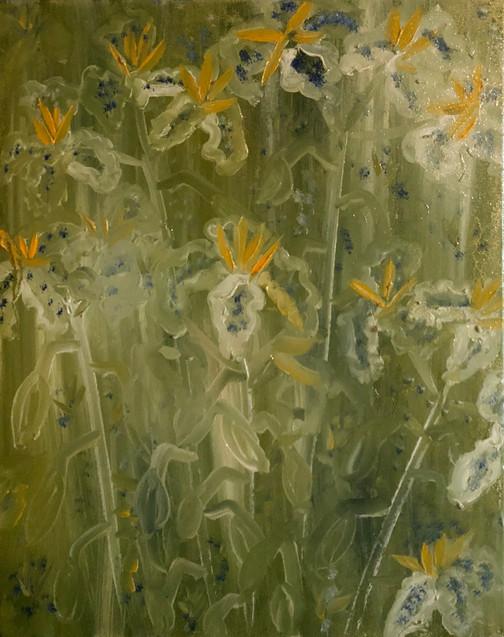 Memories of Irises