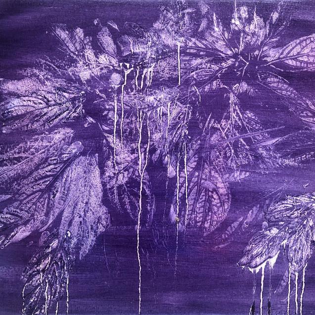 Impressions of Hydrangea I