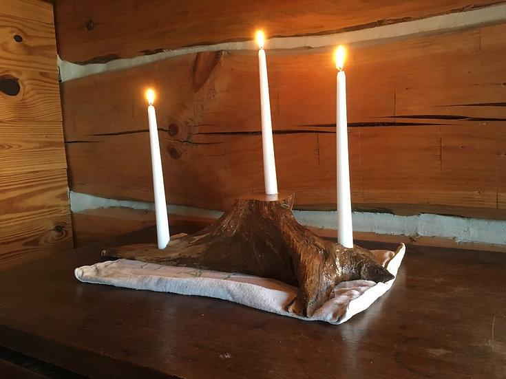 Locust Taper Candle Holder