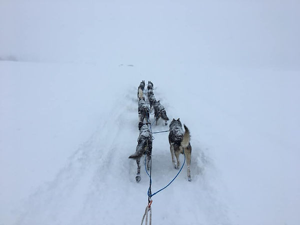 Goose Bay Snow.jpg