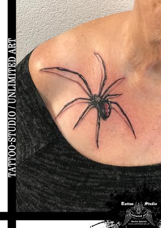 Realistische Spinne Tattoo // Realistic Spider Tattoo