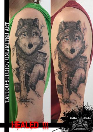 Wolf mit blauen Augen Tattoo, Realistisch-Wolf Tattoo // Wolf With Blue Eyes Tattoo