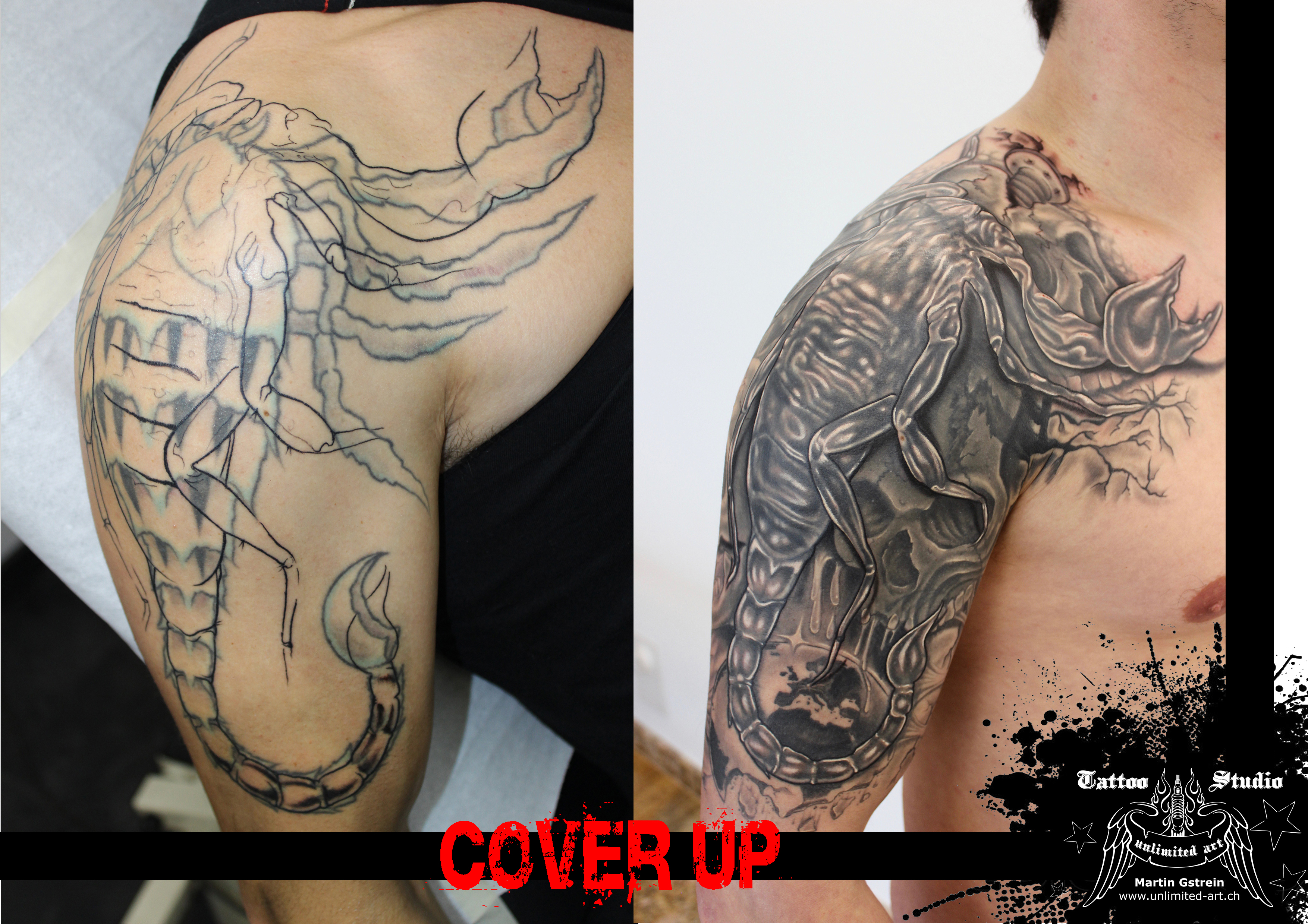 "black & grey cover up ""scorpion"""