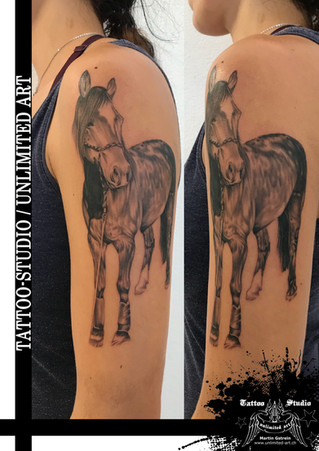 Pferd Tattoo // Horse Tattoo