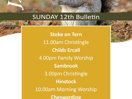 Here are our services for this Sunday 12th January