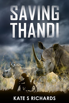 Saving Thandi book cover