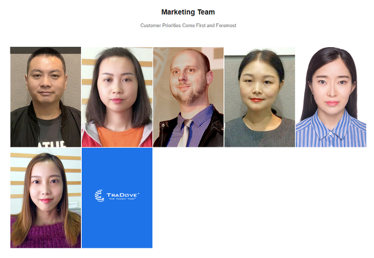 tradove project marketing team