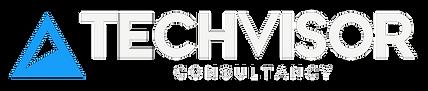 techvisor tam logo transparent.png