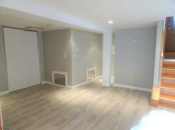 231 demott basement 2