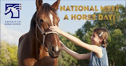 Meet-A-Horse-Day-photo-1600x840.jpg