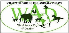 World Animal Day1.jpg