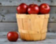 apples-1114059__180.jpg