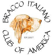bracco logo.jpg