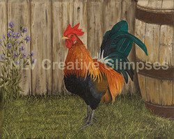 Rooster & Asters
