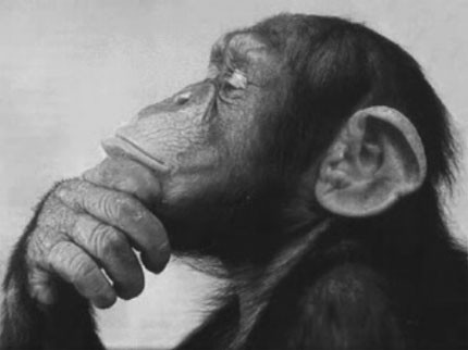 Radio Thinking is not Platform Thinking