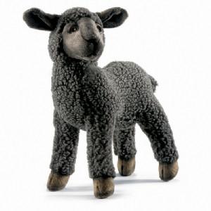 Hear the Black Sheep