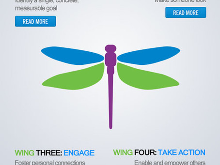 Impact Your Radio Audience the Dragonfly Way