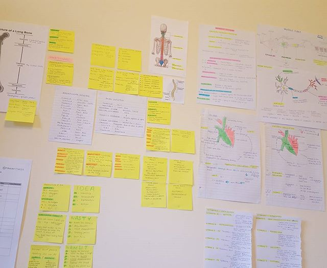 Revision wall is getting out of control 🤓💻📚✏ This is how much crazy prep I'm doing for my Level 3 diploma in Personal Training with _trainfi