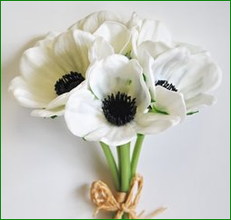 Box = 6 Anemone Bouquet