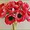 Thumbnail: Box = 1 Anemone Bouquet