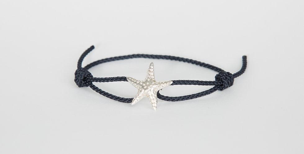 Marblehead Starfish