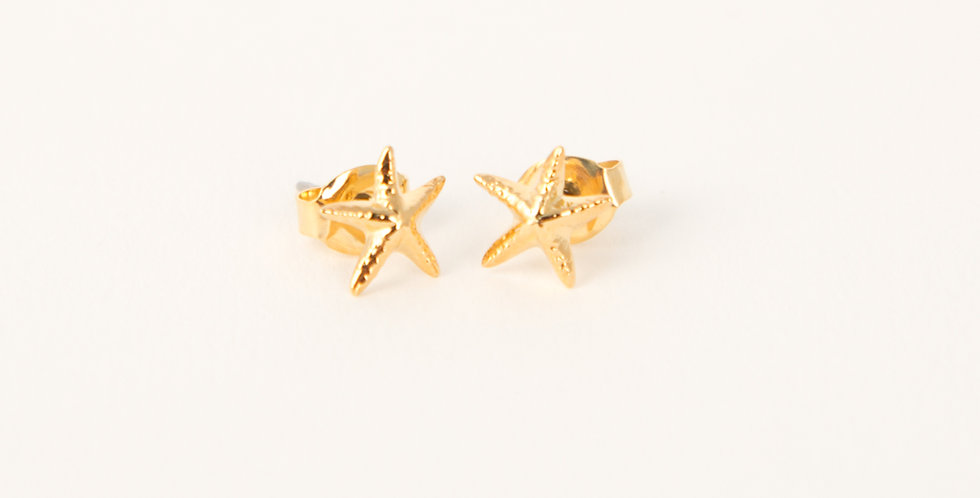 Marblehead Starfish Earrings 14kt gold dipped