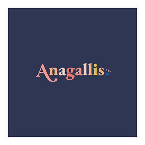 08-WORDING-ANAGALLIS-multico.jpg