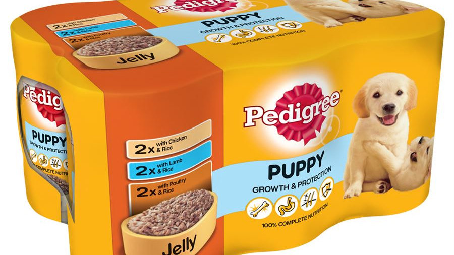 Pedigree Mixed Selection Puppy in Jelly