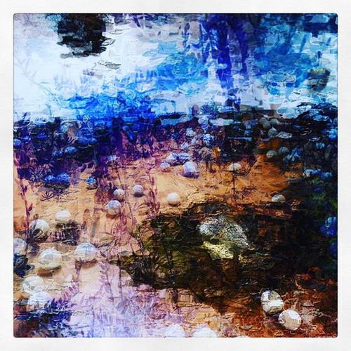 Nature + Plastic.jpg